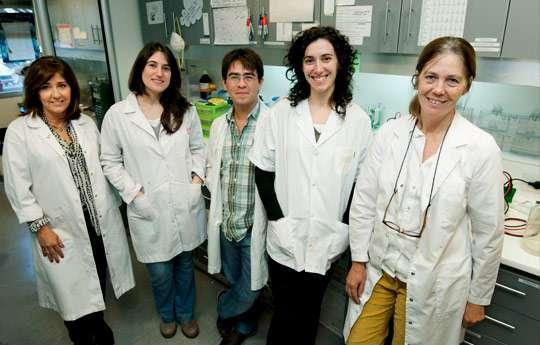 Claudia Lanari, a la derecha, y parte del equipo del Laboratorio de Carcinogénesis Hormonal del IBYME. Foto: CONICET Fotografia.
