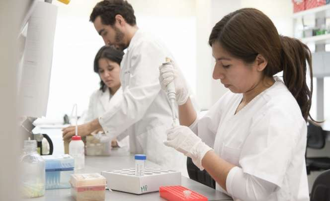 Nuevas investigaciones argentinas publicadas en revistas científicas internacionales