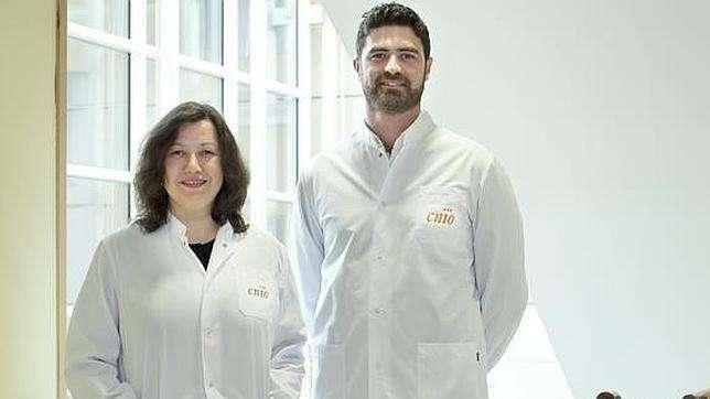 Los investigadores del CNIO, Mirna Pérez-Moreno y Donatello Castellana