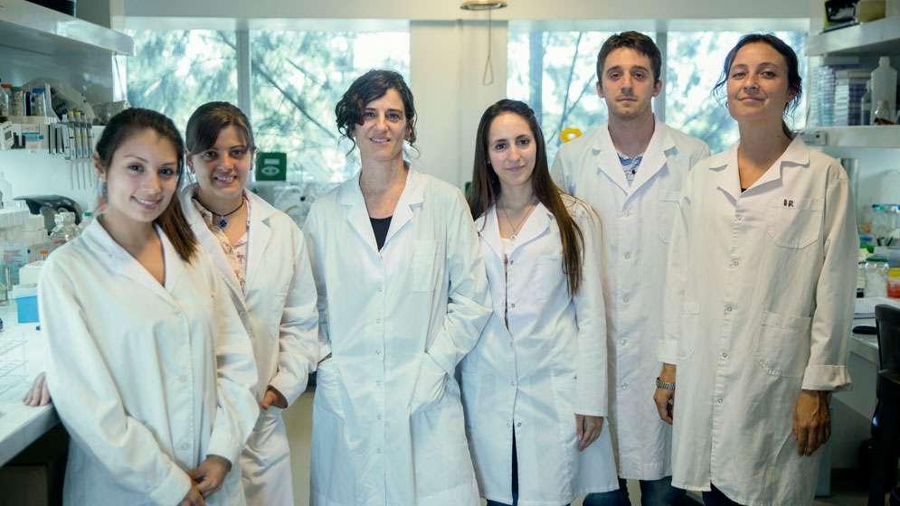 Investigadores del CONICET y de la UNSAM descubrieron que las células epiteliales pueden eliminar a la bacteria causante de la muerte de pacientes con fibrosis quística.